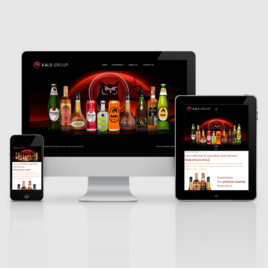 Website design and development for KALS Group
